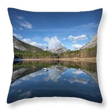 Wedge Pond Reflections Throw Pillow