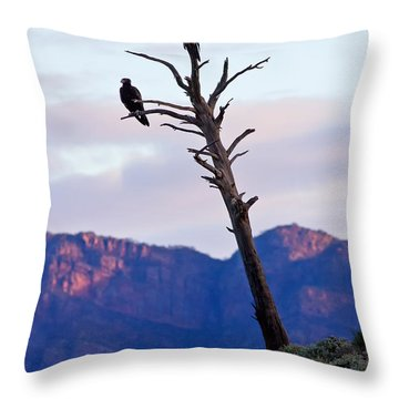 Wedge Tail Eagles Throw Pillow by Bill  Robinson