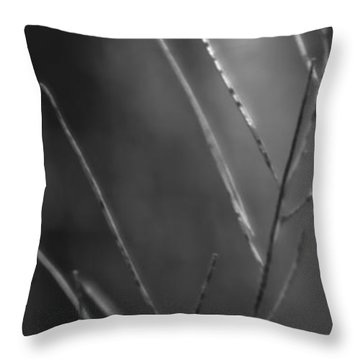 Throw Pillow featuring the photograph Weeds 1 by Catherine Sobredo