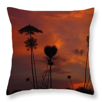Weeds In The Sunrise Throw Pillow by Kathryn Meyer