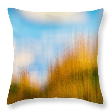 Throw Pillow featuring the photograph Weeds Under A Soft Blue Sky by Nick Biemans