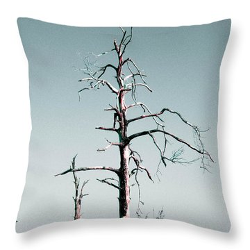 Weep Throw Pillow
