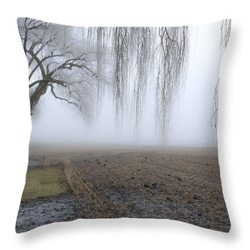 Weeping Frozen Willow Throw Pillow