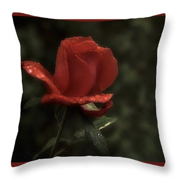 Weeping Red Rose Throw Pillow