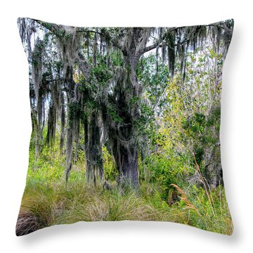 Throw Pillow featuring the photograph Weeping Willow by Madeline Ellis