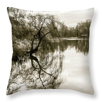 Weeping Willow Tree In The Winter Throw Pillow