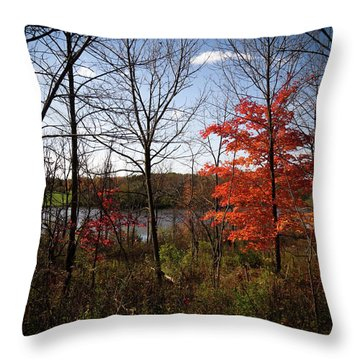 Wehr Wonders Throw Pillow by Kimberly Mackowski