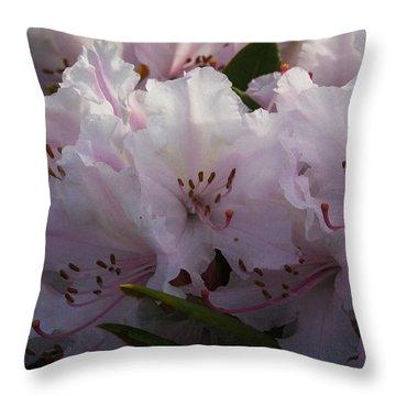 Weigela Blossom Throw Pillow
