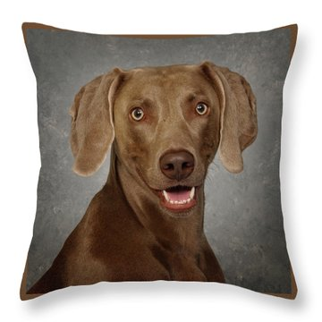 Throw Pillow featuring the photograph Weimaraner by Greg Mimbs