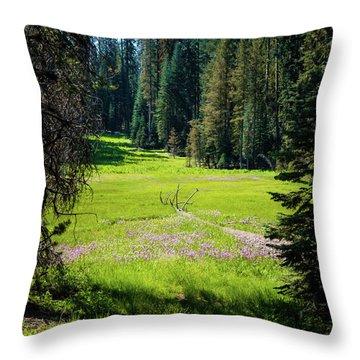 Welcom To Life- Throw Pillow