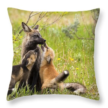 Welcome Throw Pillow by Aaron Whittemore