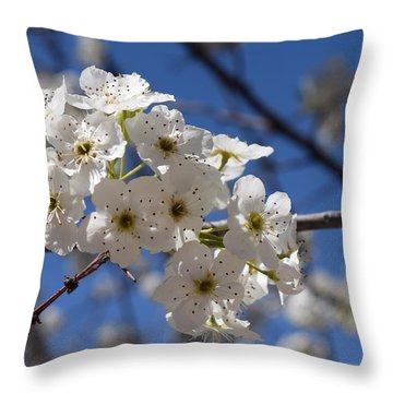 Welcome Colorado Spring Throw Pillow