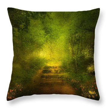 Welcome Path Throw Pillow by Svetlana Sewell