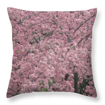 Welcome Spring 10 Throw Pillow