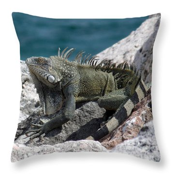 Welcome To Curacao Throw Pillow