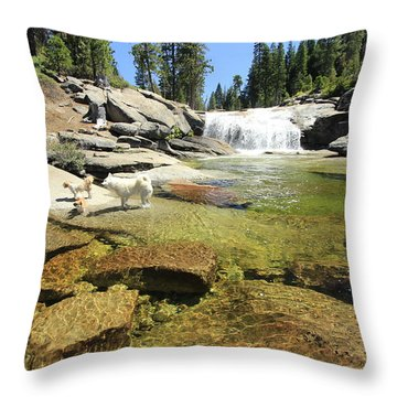 Throw Pillow featuring the photograph Welcome To Dog's Dreams by Sean Sarsfield