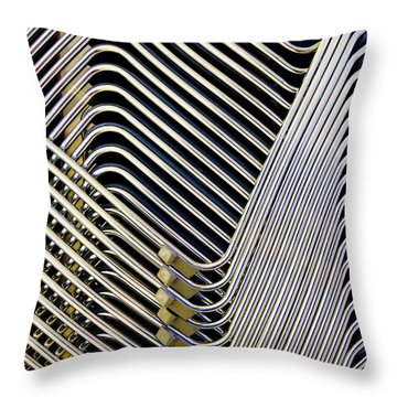 Chrome Throw Pillows