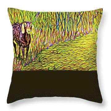 Welcoming Goats Throw Pillow by Joel Bruce Wallach