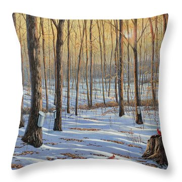 Welcoming The Sunrise Throw Pillow