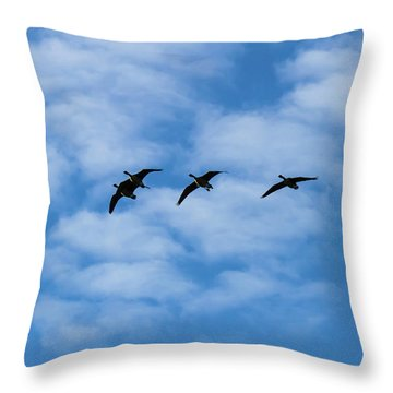 Throw Pillow featuring the photograph We'll Be Right Back by Robert L Jackson
