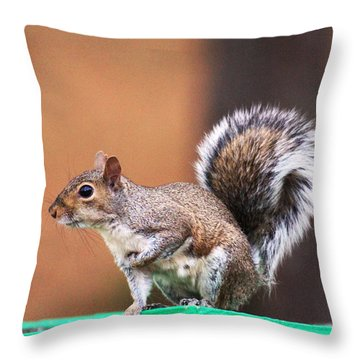 Well Fed Throw Pillow