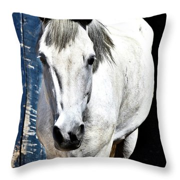 Well, Hello There Throw Pillow