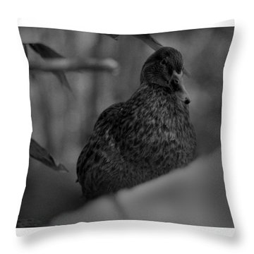 Well, Hi There. Throw Pillow