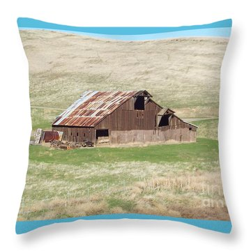 Well Used Throw Pillow
