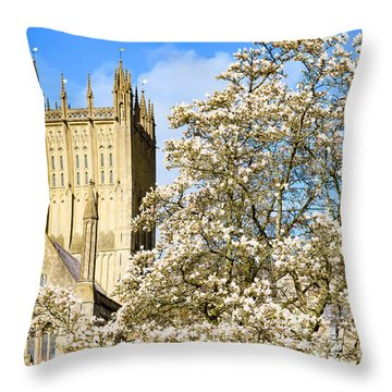 Throw Pillow featuring the photograph Wells Cathedral And Spring Blossom by Colin Rayner