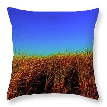 Wells Rachel Carson Wildlife Refuge Grass And Dunes Throw Pillow