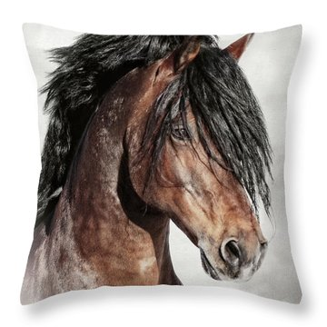 Welsh Cob Portrait Throw Pillow