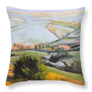 Welsh Landscape In Winter Throw Pillow by Harry Robertson