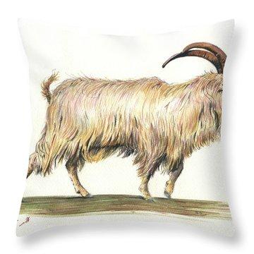 Welsh Long Hair Mountain Goat Throw Pillow