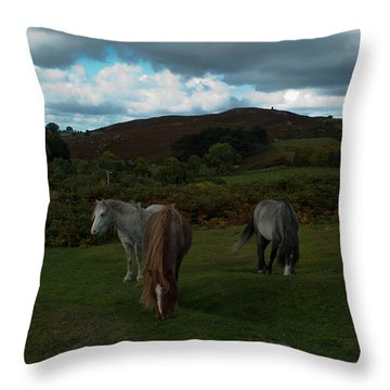 Throw Pillow featuring the photograph Welsh Mountain Pony's  by Lynn Hughes