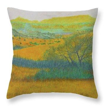 West Dakota Reverie Throw Pillow