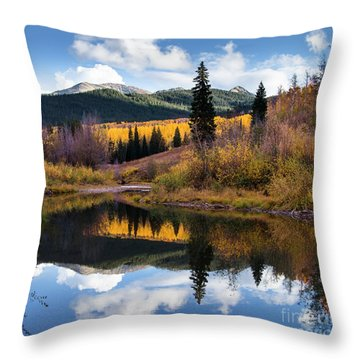 Throw Pillow featuring the photograph West Elk Range Reflection by The Forests Edge Photography - Diane Sandoval