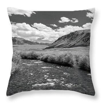West Fork, Big Lost River Throw Pillow
