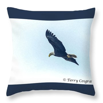 West Point American Eagle. Throw Pillow by Terry Cosgrave