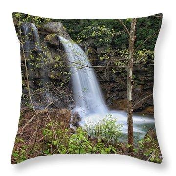 West Virginia Highway 16 Treat Throw Pillow