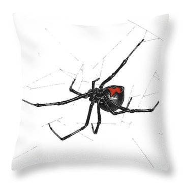 Western Black Widow - Color Throw Pillow