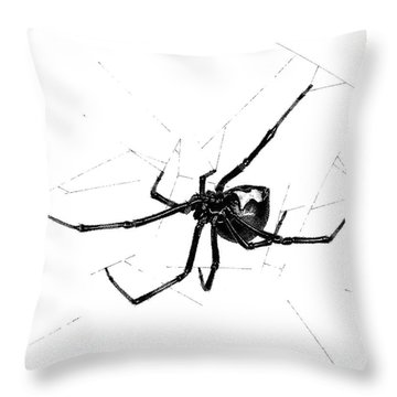 Western Black Widow Throw Pillow