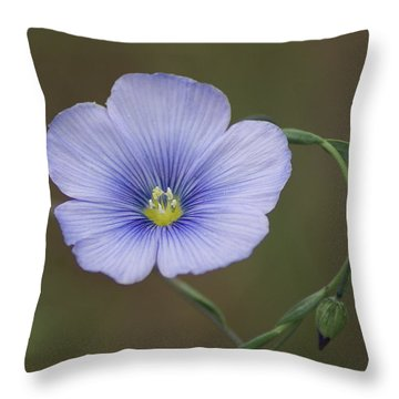 Throw Pillow featuring the photograph Western Blue Flax by Ben Upham III