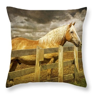 Western Horse In Alberta Canada Throw Pillow