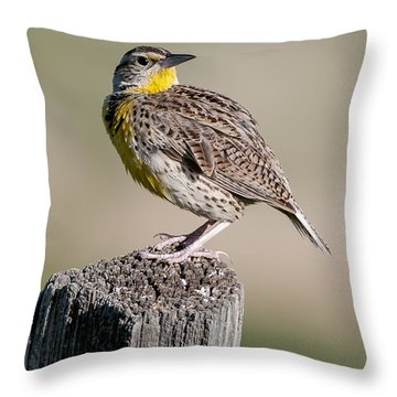 Throw Pillow featuring the photograph Western Meadowlark by Gary Lengyel
