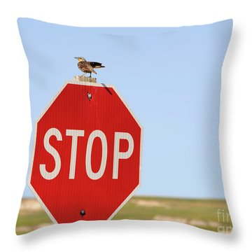 Western Meadowlark Singing On Top Of A Stop Sign Throw Pillow by Louise Heusinkveld