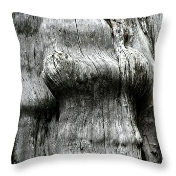 Western Red Cedar - Thuja Plicata - Olympic National Park Wa Throw Pillow by Christine Till
