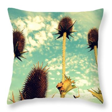Western Roses Throw Pillow