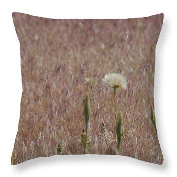 Western Salsify Seed Head Throw Pillow
