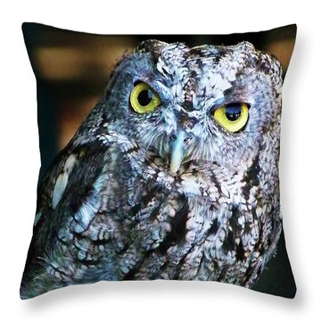 Throw Pillow featuring the photograph Western Screech Owl by Anthony Jones
