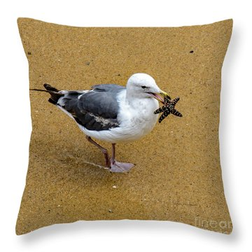 Western Seagull Carrying A Starfish Throw Pillow